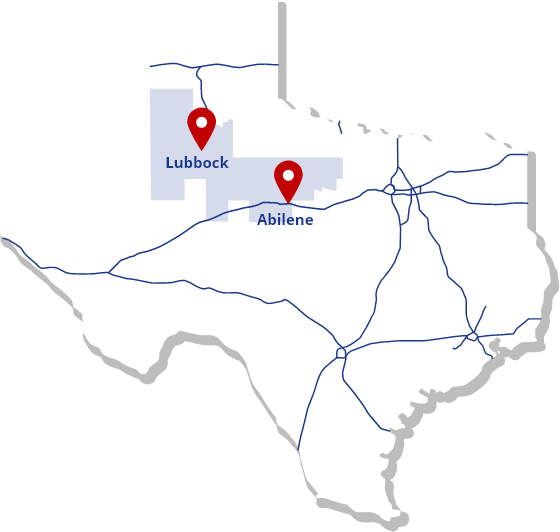 Texas 19th District Map